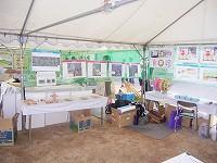 水辺の楽校 展示